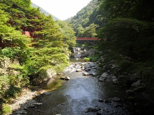 20110716_kiyotaki07