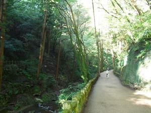 20111112_katsuo02