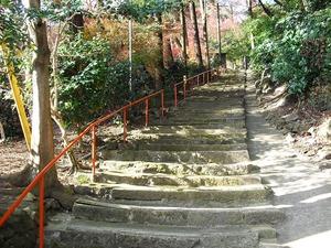 20111224_yawata04