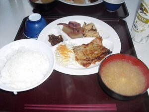 20110709_hakusan19