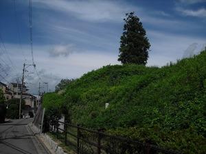 20110619_rakusai03