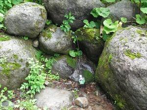 20110710_hakusan09
