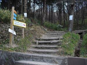 20120107_narukawa07