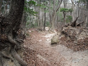 20110402_higashirokkou18