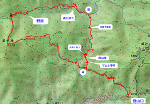 20110811_amagoi2