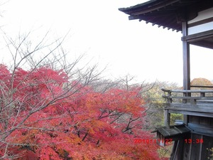 1128_ishiyama14