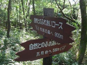 20141103_satsuki06