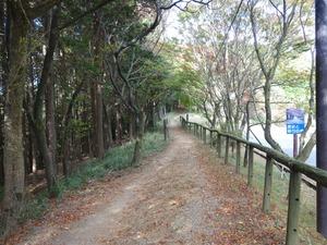 20151031_kitayama_31