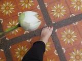 tailand2014_3_2
