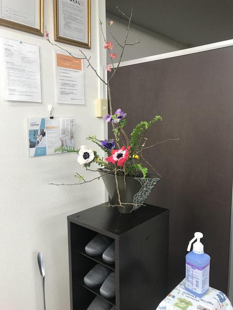210301ccg_flower