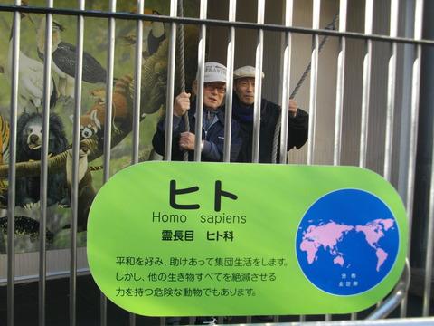 日本平動物園 056