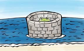 井の中の蛙 : First Penguin