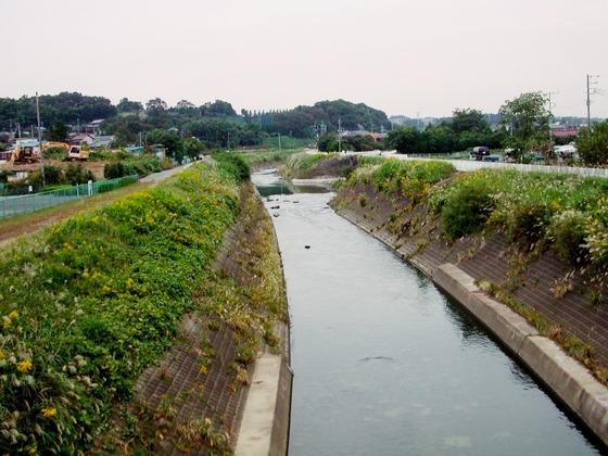 鶴見川031021e