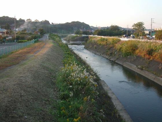 031030鶴見川