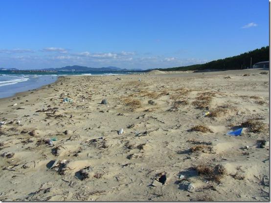 新宮海岸ゴミ