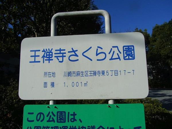近辺の公園4