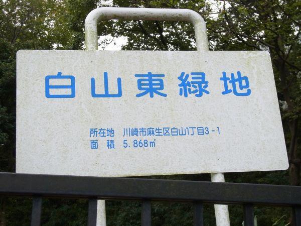 近辺の公園 12