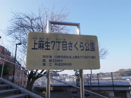 近辺の公園 15