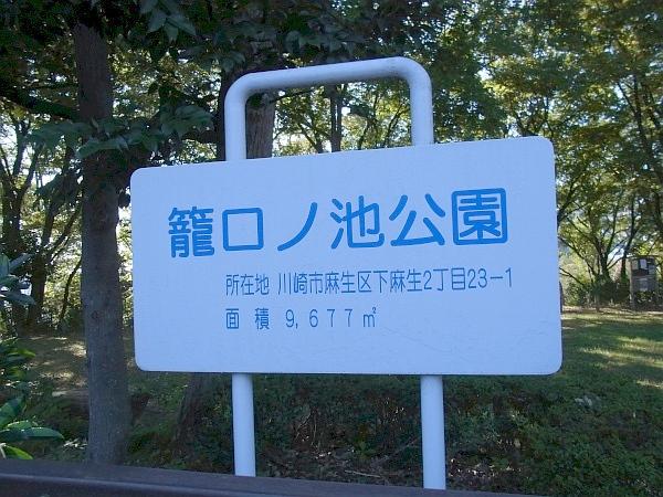 近辺の公園3