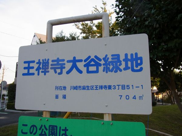 近辺の公園 11