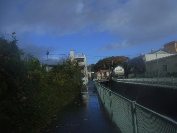 気温上昇でレンズが曇り蝿を撮れなかったこと