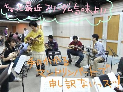 mandolin_111008_03