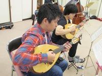 mandolin_2-2