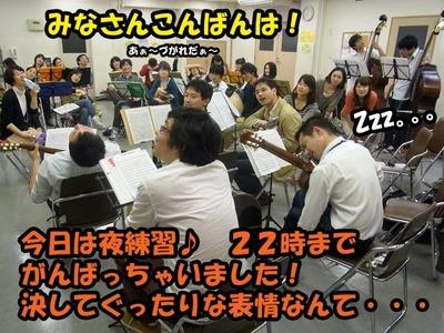 mandolin_110423-集合