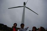 W0322春レク風車