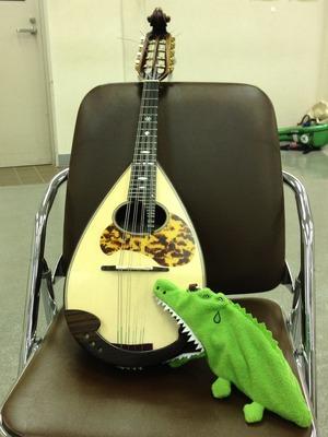 IMG_怜子さん新しい楽器買いました!・・・ガブガブむしゃむしゃ