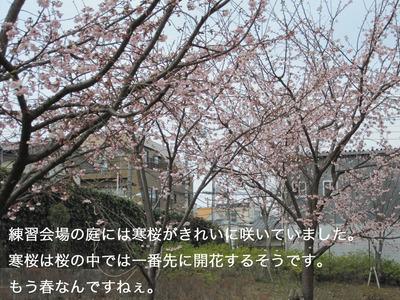 IMG_2256