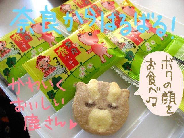 mandolin_100424-4_ 鹿クッキー