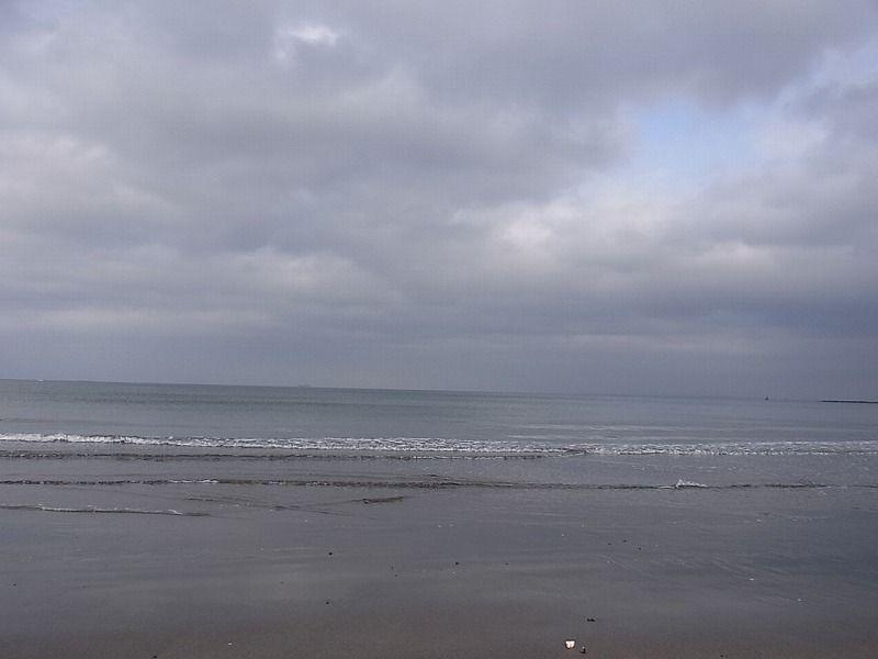海岸写真�
