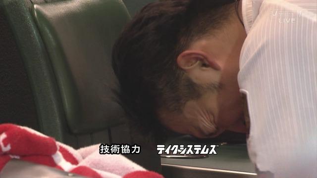 鈴木誠也ベンチ頭突き (1)
