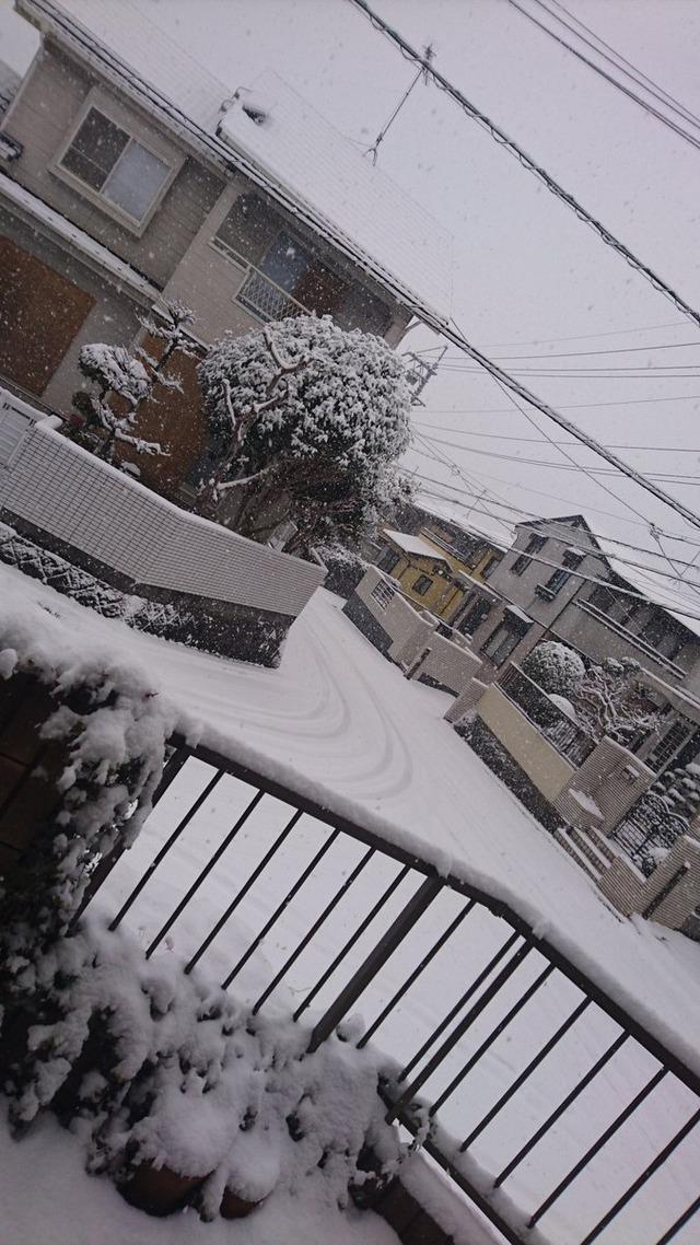 広島県_大雪 (2)