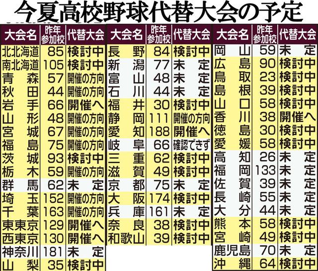 東京都_夏の甲子園_独自開催