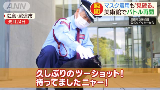 猫警備員広島県尾道美術館