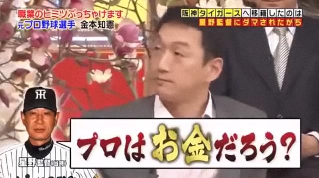 金本FA星野監督交渉_05