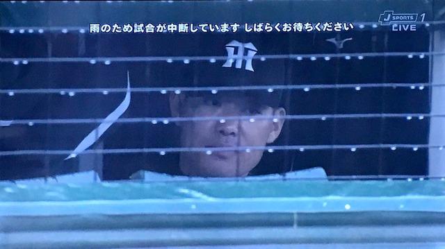 広島ベンチ阪神ベンチ違い_02