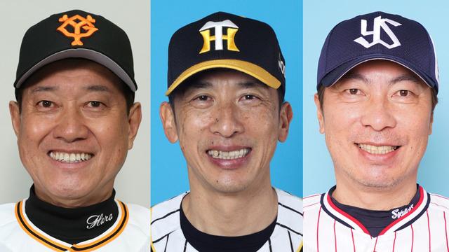 カープファンは巨人阪神ヤクルトのどこに優勝して欲しい?