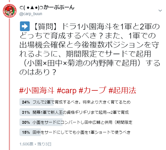 小園海斗_起用法_育成法
