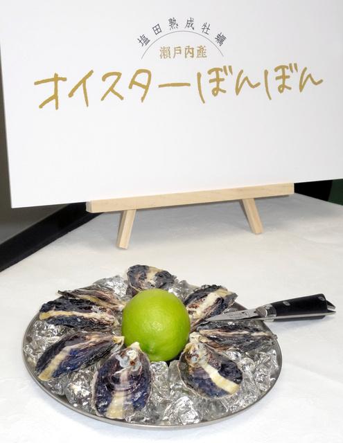 JR西_牡蠣養殖事業