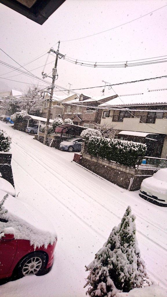 広島県_大雪 (1)