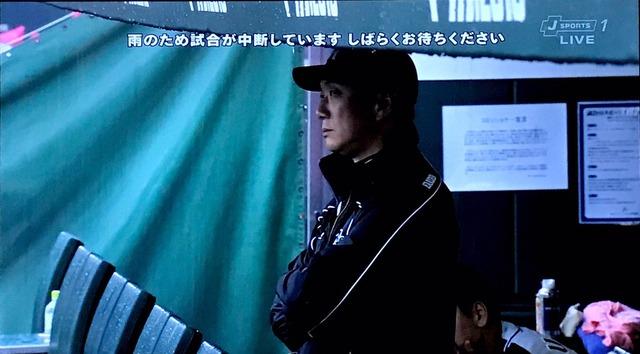 広島ベンチ阪神ベンチ違い
