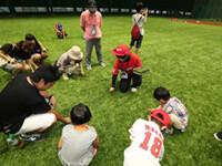 マツダスタジアムツアーガイド (2)