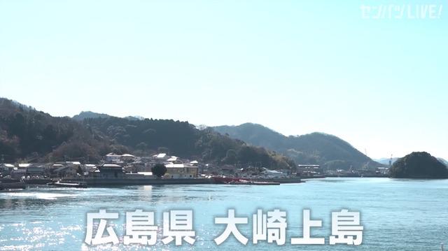 新井貴浩_離島中学生野球部_熱血指導_02