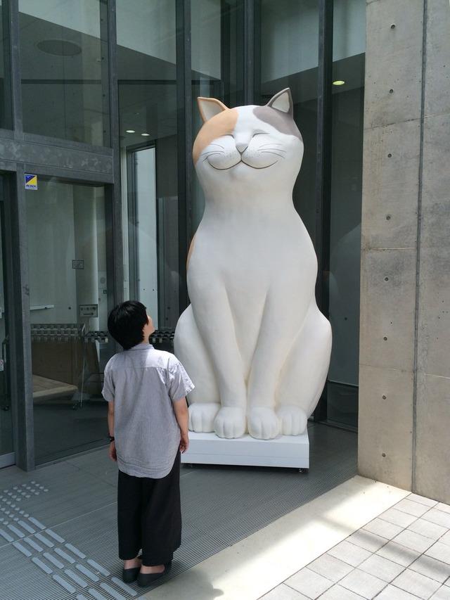 広島県尾道市猫まみれ展