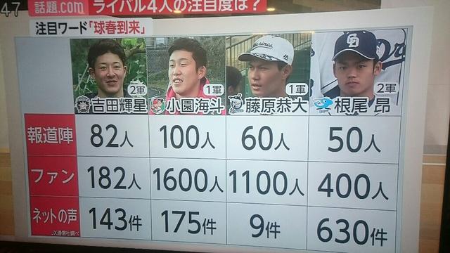 カープ小園_中日根尾_日ハム吉田_ロッテ藤原