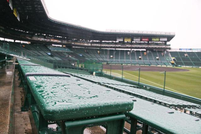 広島阪神戦は雨天中止九里&藤浪の登板流れる