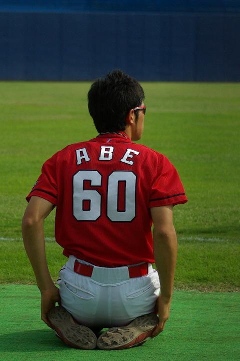 アベノミクスにプロ野球16球団構想…候補地は北信越、静岡、四国、沖縄